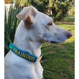 ITH Leash Safety Wrap -...