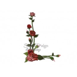 Romantic Rose Bouquet Nr. 2 5x7""