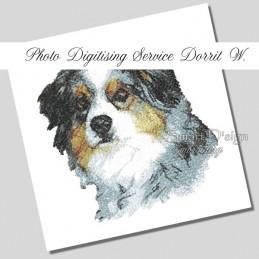 Custom Digitising Service Dorrit W.