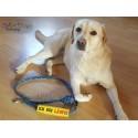 ICH BIN LÄUFIG - ITH Leash Safety Wrap Yellow Dog Ribbon 5x7 inch Machine Embroidery Design