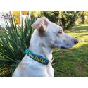 IM TRAINING - ITH Leash Safety Wrap Yellow Dog Ribbon 5x7 inch Machine Embroidery Design