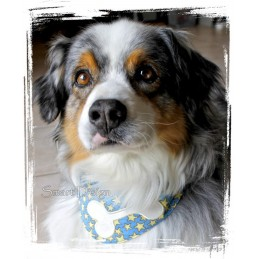 8 Dog Collar Bibs Bandanas 6.2x10.2 inch ITH