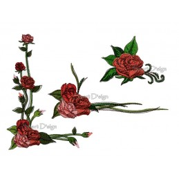 Romantische Rosen 13x18 cm